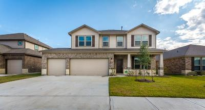 Manvel Single Family Home For Sale: 50 Alyssa Palms Drive