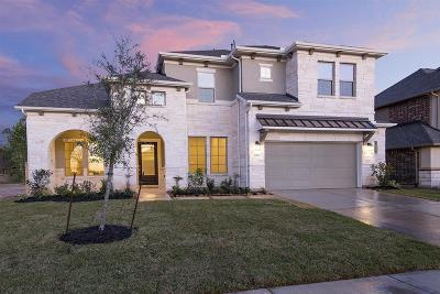 Tomball Single Family Home For Sale: 19118 Blue Hill