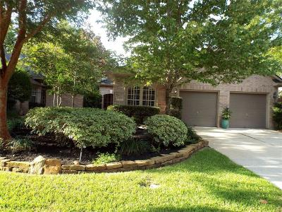 The Woodlands Single Family Home For Sale: 30 E Honey Grove Place
