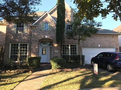 Houston Single Family Home For Sale: 16726 Shallow Ridge Boulevard