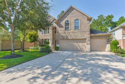 Summerwood Single Family Home For Sale: 14403 Baron Creek Lane