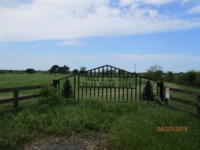 Tomball Country Home/Acreage For Sale: 20139 Telge Road