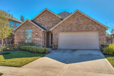 Conroe Single Family Home For Sale: 8477 Horsepen Bend Drive