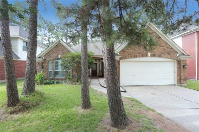 Houston Single Family Home For Sale: 9331 Rodgers Road