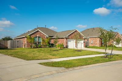 Dickinson Single Family Home For Sale: 6536 Turner Fields Lane