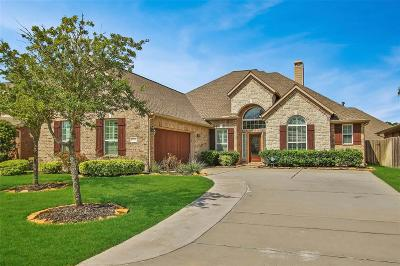 Tomball Single Family Home For Sale: 17819 Winkler Willow Court