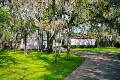 Houston Single Family Home For Sale: 1111 Briar Bayou Drive