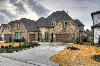 Montgomery Single Family Home For Sale: 121 Canvas Back Drive
