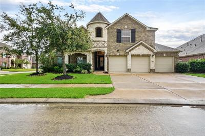 Pearland Single Family Home For Sale: 2101 Woodland Court