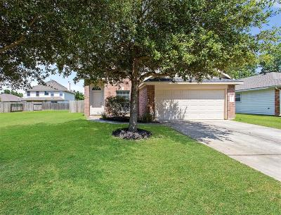 Tomball Single Family Home For Sale: 20314 Evening Primrose Lane