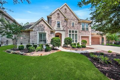 The Woodlands Single Family Home For Sale: 14 Shanewood Court