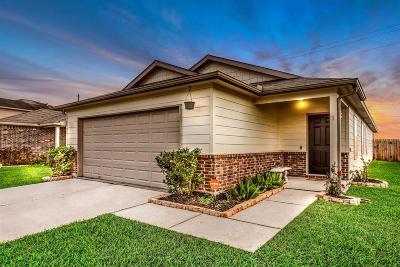 Rosenberg Single Family Home For Sale: 630 Enchanted Springs Drive