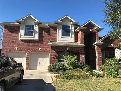 Houston Single Family Home For Sale: 13623 Brighton Park Drive