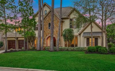 Spring Single Family Home For Sale: 250 E Tupelo Green Circle