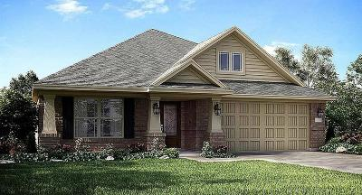 Rosenberg Single Family Home For Sale: 7622 Adobe Canyon Lane