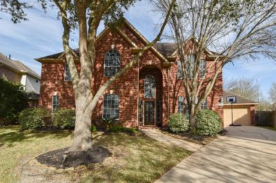Sugar Land Single Family Home For Sale: 8426 Green Valley Drive