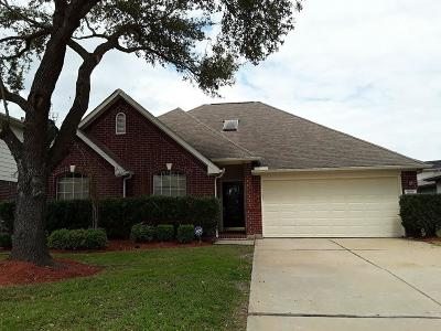 Fort Bend County Single Family Home For Sale: 4519 Reams Lane
