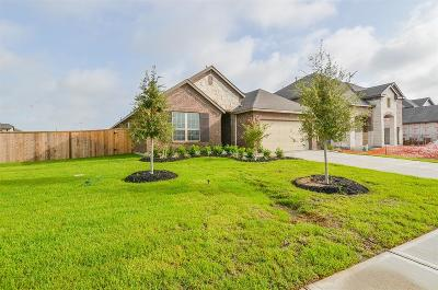 Katy Single Family Home For Sale: 28730 Forest Pass Lane