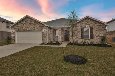 Pearland Single Family Home For Sale: 3905 Mountford Drive