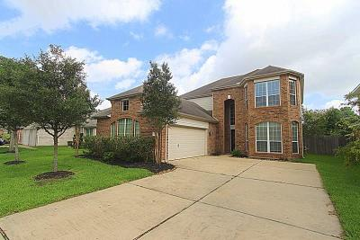 Houston Single Family Home For Sale: 17102 Willow Ranch Drive