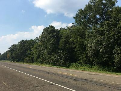 Dayton Residential Lots & Land For Sale: 00 Hwy 321 Tx