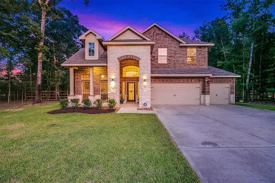 Single Family Home For Sale: 9143 Silver Back Trail