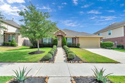 Missouri City Single Family Home For Sale: 27 Roma Ridge Drive
