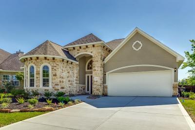 Montgomery Single Family Home For Sale: 31 Hillsborough