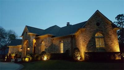 Tomball Single Family Home For Sale: 11927 Waterford Estates Court