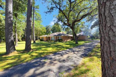 Houston Single Family Home For Sale: 11903 Campos Drive