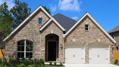 Montgomery Single Family Home For Sale: 266 Capriccio Lane