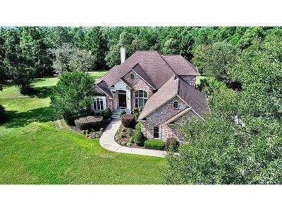 Montgomery Single Family Home For Sale: 8536 Prince William Court