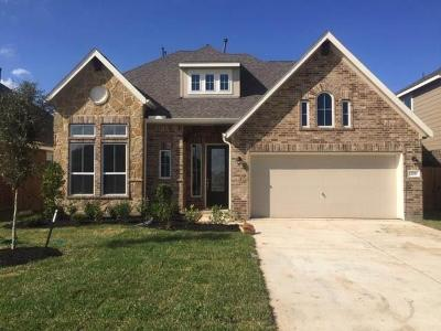 Alvin Single Family Home For Sale: 228 Ashley Way