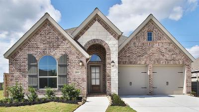 Manvel Single Family Home For Sale: 2051 Blackhawk Ridge Lane