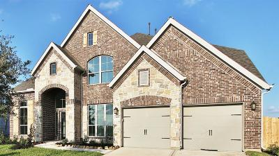 Pearland Single Family Home For Sale: 3203 Iris Trail Lane