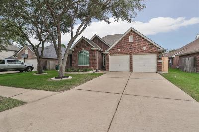 Houston Single Family Home For Sale: 17106 Kiowa River Lane