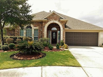 Porter Single Family Home For Sale: 21405 Dove Haven Court
