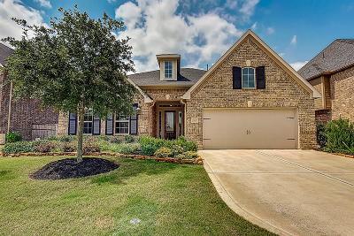 Fulshear Single Family Home For Sale: 27407 Llano Meadows Lane