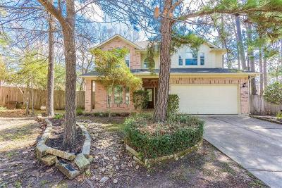 The Woodlands Single Family Home For Sale: 15 Jewelsford Court