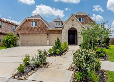 Sienna Plantation Single Family Home For Sale: 2707 Big Vine Court