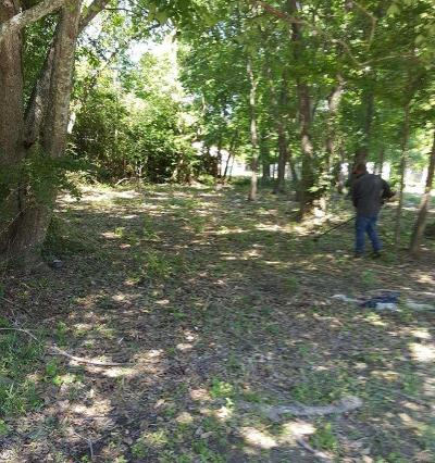 Houston Residential Lots & Land For Sale: 8215 Sealy Street