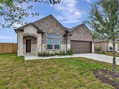 Rosenberg Single Family Home For Sale: 5822 Golden Peak Lane