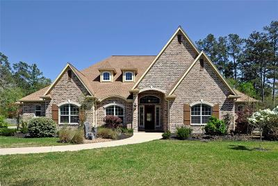 Magnolia Single Family Home For Sale: 36422 High Chaperral