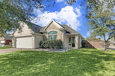 Single Family Home For Sale: 11401 Tidenhaven Court