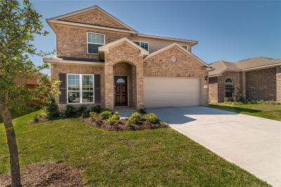 Texas City Single Family Home For Sale: 12601 South Shore Drive