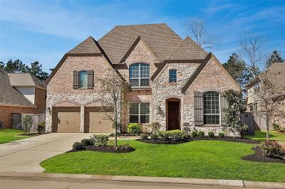 Montgomery Single Family Home For Sale: 134 Hunter Hollow Drive