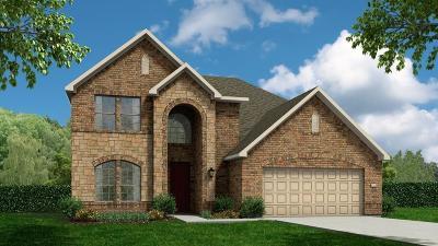 Rosenberg Single Family Home For Sale: 8223 Longear Lane