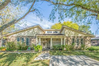 Brazoria Single Family Home For Sale: 243 Yaupon Drive