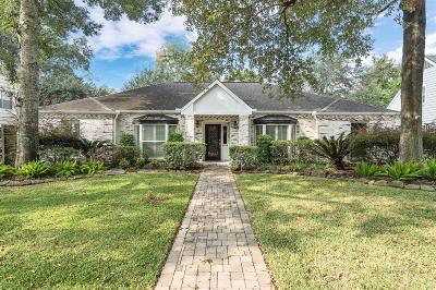 Houston Single Family Home For Sale: 615 Hallie Drive