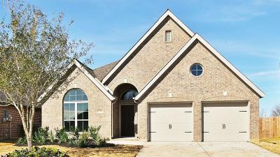 Pearland Single Family Home For Sale: 13805 Arbor Meadows Lane